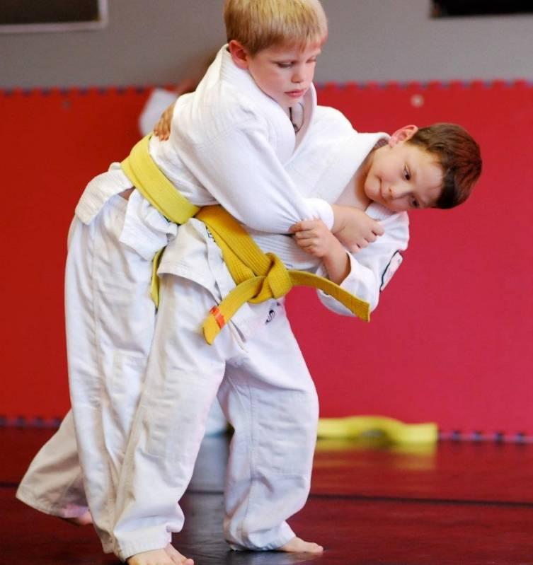 Onde Encontrar Treino de Judo Infantil Campinas - Aula de Jiu Jitsu para Iniciante