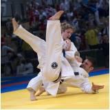 onde encontrar academia de jiu jitsu Campinas