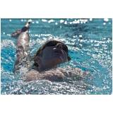 onde encontro aula de natação para iniciante Campinas